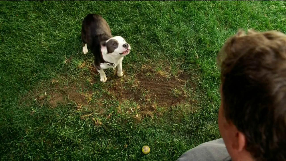 Scotts EZ Seed TV Commercial, 'Lawn Patch'