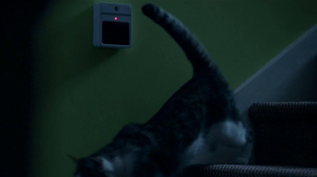 Friskies TV Spot, 'Night Lights' Song by Caught A Ghost - Thumbnail 4