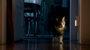 Friskies TV Spot, 'Night Lights' Song by Caught A Ghost - Thumbnail 6