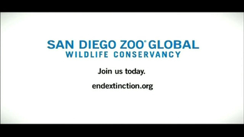 San Diego Zoo Global Wildlife Conservancy TV Spot, 'Signs' - Thumbnail 6