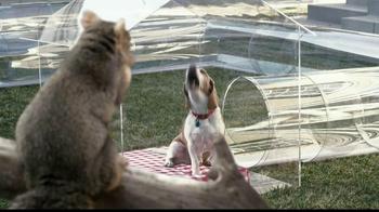 Trifexis TV Spot, 'Dog Tube' - Thumbnail 9