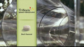 Trifexis TV Spot, 'Dog Tube' - Thumbnail 4