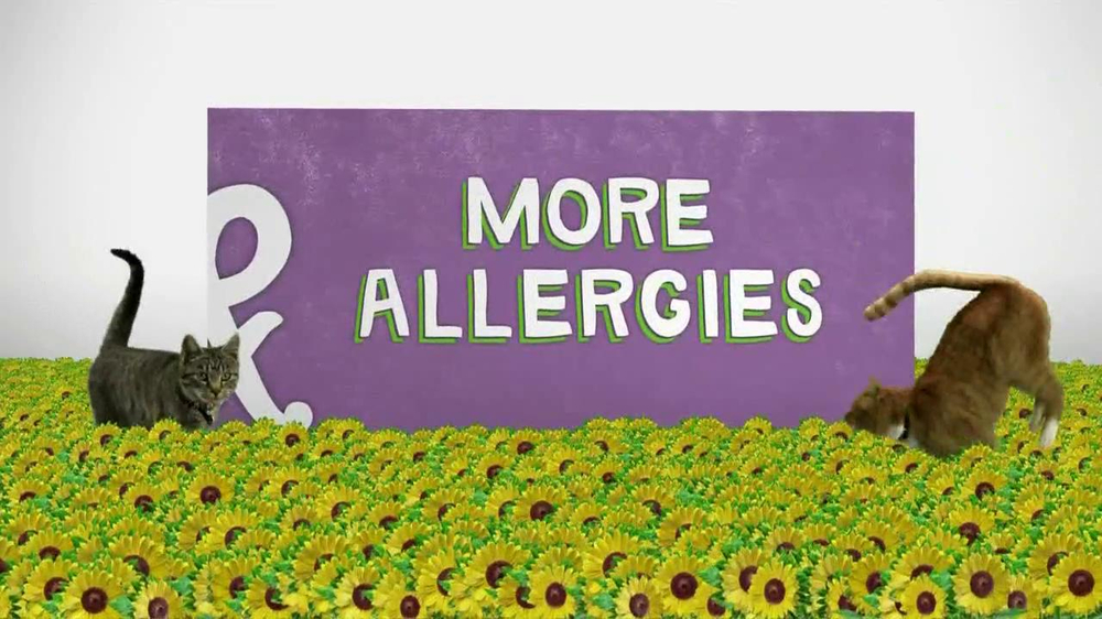 Walgreens TV Commercial, 'Corner of Allergies and More Allergies'