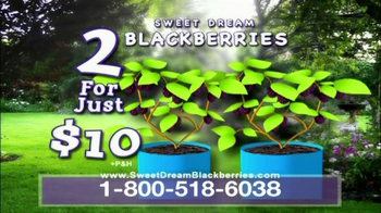 Sweet Dream Blackberries TV Spot