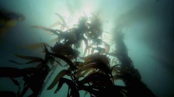 Bank of America TV Spot, 'San Diego Biofuel' - Thumbnail 8