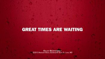 Budweiser TV Spot, 'NASCAR' Song by Los Campesinos! - Thumbnail 9
