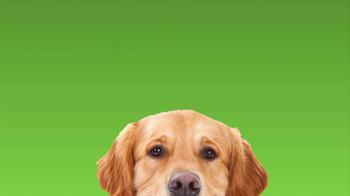 Rover.com TV Spot, 'Dog People' - Thumbnail 8
