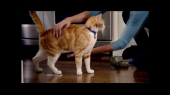 PetSmart Sping Savings Sale TV Spot, 'Sheba' - Thumbnail 3