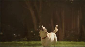 PetSmart TV Spot, 'Hill's Science Diet' - Thumbnail 4