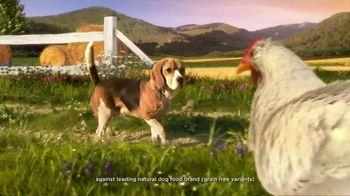 Hill's Pet Nutrition Ideal Balance TV Spot, 'Ingredient Proportions'