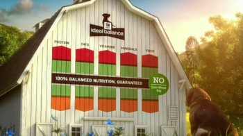 Hill's Pet Nutrition Ideal Balance TV Spot, 'Ingredient Proportions' - Thumbnail 9