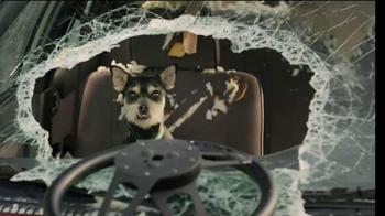 GEICO TV Spot, 'Dog Treats' - Thumbnail 8