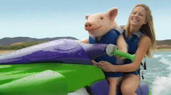 GEICO TV Spot, 'Maxwell and Ted Have Hail Damage'