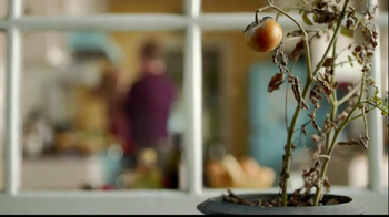 Miracle-Gro Liquafeed TV Spot, 'Bigger, Healthier, More Beautiful' - Thumbnail 2