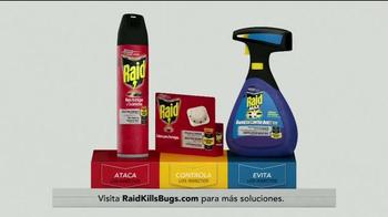 Raid TV Spot, 'Gane La Guerra Contra Las Hormigas' [Spanish] - Thumbnail 9
