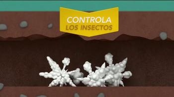 Raid TV Spot, 'Gane La Guerra Contra Las Hormigas' [Spanish] - Thumbnail 6
