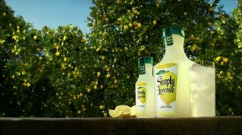 Simply Lemonade TV Spot, 'Never Concentrated, Always Delicious'