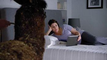 Serta iComfort TV Spot, 'Alpaca' - Thumbnail 1