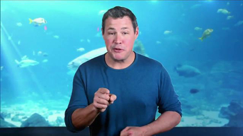 Georgia Aquarium TV Spot, 'World Oceans Day' Featuring Jeff Corwin - 2 commercial airings
