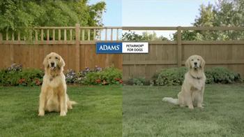 Adams Flea Control TV Spot, 'Side-by-Side Comparison' - Thumbnail 1