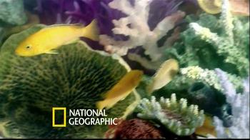 PetSmart TV Spot, 'National Geographic' - Thumbnail 6