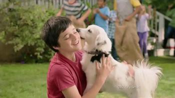 PetSmart Memorial Day Sale TV Spot - 731 commercial airings