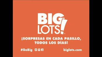 Big Lots Oferta Mezcle y Combina de Memorial Day TV Spot [Spanish] - Thumbnail 9