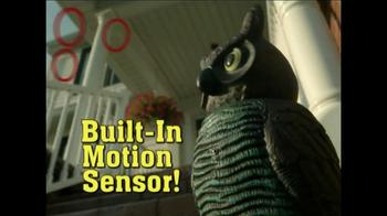 Watch Owl thumbnail
