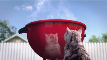 Friskies Grillers Tender & Crunchy TV Spot - Thumbnail 2