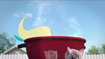 Friskies Grillers Tender & Crunchy TV Spot - Thumbnail 3