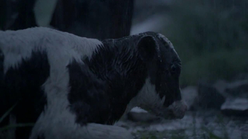 Chevrolet Silverado TV Spot, 'A Man and His Truck' Song By Will Hoge - Thumbnail 8