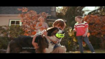 PetSmart Fall Savings Sale TV Spot