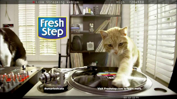 Fresh Step Odor Shield TV Spot, 'Smart Cats: DJs' - Thumbnail 9