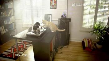 Fresh Step Odor Shield TV Spot, 'Smart Cats: DJs' - Thumbnail 2