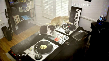 Fresh Step Odor Shield TV Spot, 'Smart Cats: DJs' - Thumbnail 3