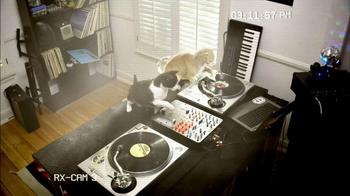 Fresh Step Odor Shield TV Spot, 'Smart Cats: DJs' - Thumbnail 4