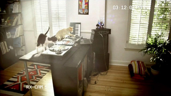 Fresh Step Odor Shield TV Spot, 'Smart Cats: DJs'