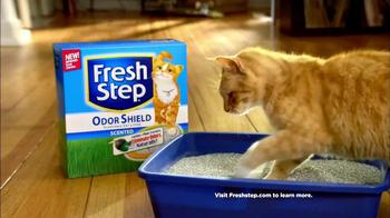 Fresh Step Odor Shield TV Spot, 'Smart Cats: DJs' - Thumbnail 6