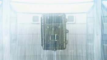 Bushnell Trophy Cam TV Spot, 'Tortue Testing' - Thumbnail 1