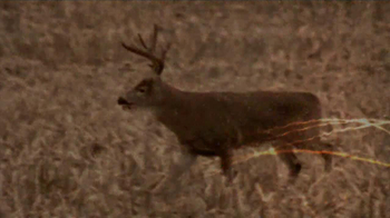 Federal Premium Ammunition Fusion TV Spot, 'Modern Deer Hunting' - Thumbnail 1