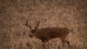 Federal Premium Ammunition Fusion TV Spot, 'Modern Deer Hunting' - Thumbnail 2