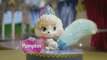 Disney Princesses Palace Pets TV Spot - Thumbnail 4