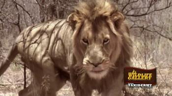 The Wildlife Gallery TV Spot - Thumbnail 1