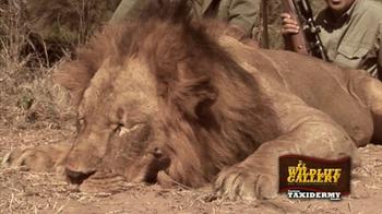 The Wildlife Gallery TV Spot - Thumbnail 4