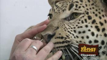 The Wildlife Gallery TV Spot - Thumbnail 6