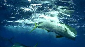 Shimano Orca TV Spot - Thumbnail 6