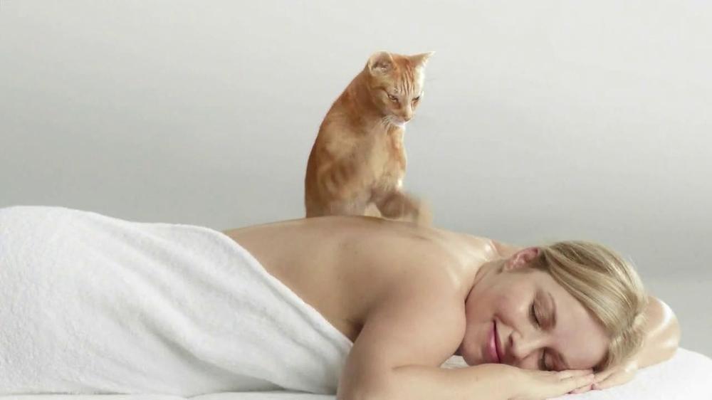 Картинка делают массаж котику