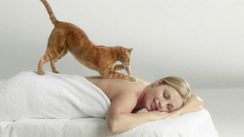 Cat Massage thumbnail