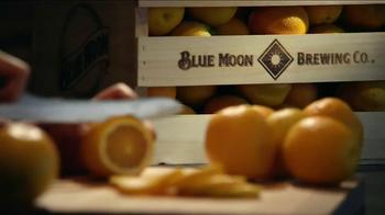 Blue Moon Belgian White TV Spot, 'Celebrating 18 Years' - Thumbnail 5