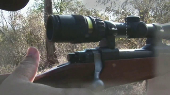 M77 Hawkeye African .375 Ruger TV Spot - Thumbnail 10